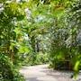 Tropical Islands Resort photo 29/41