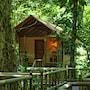 Evergreen Lodge photo 38/41