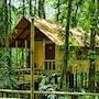 Evergreen Lodge photo 35/41