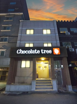 Chocolate Tree - Featured Image  - #0