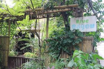 Blue Bayou Bungalows Boracay Garden