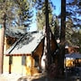 3663 Forest Ave photo 2/10