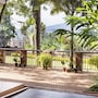 Papaya Holiday Home photo 11/33
