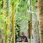 Eden Garden Ayurvedic Health Retreat photo 21/40