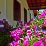 Villa Tangalle Lagoon photo 33/41
