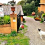Agriturismo Menchetti photo 41/41