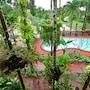 Pathu Resort Ranong photo 29/32