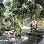 Duc Thao Guest House photo 14/41