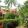 Palm Village photo 37/41