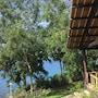 Bohol Lahoy Dive Resort photo 10/41