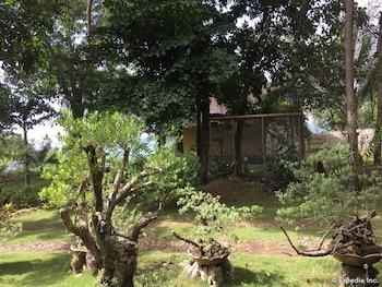Bohol Lahoy Dive Resort Garden
