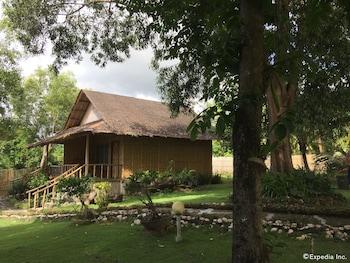 Bohol Lahoy Dive Resort Property Grounds