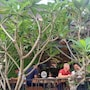 The Batik Hotel photo 14/21