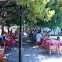 Oasis Hotel Bungalows Rodos - All Inclusive photo 9/41