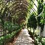 Nha Viet Hotel photo 5/12