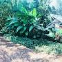 Raíces Amambai Lodges photo 10/34