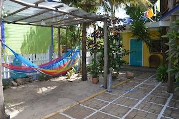 All Seasons Guest House - Terrace/Patio  - #0