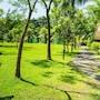 Tropical Delight Resort photo 9/39