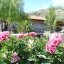 Prespa Resort & Spa photo 10/41