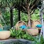 Hotel Indigo Bali Seminyak Beach photo 34/41