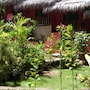 La Casita Bed and Breakfast photo 13/41