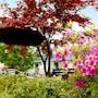 Pyeongchang Greenhill Resort photo 28/41