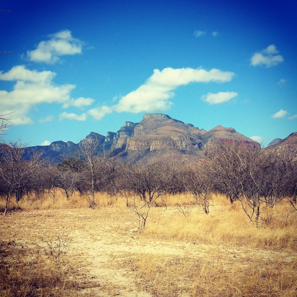 Mariepskop View