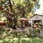 Mount Meru Game Lodge photo 30/41