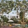 Baanwaan Resort Hat Yai photo 9/11