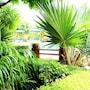 Baan Vanida Garden Resort photo 21/41