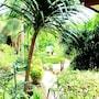Baan Vanida Garden Resort photo 22/41