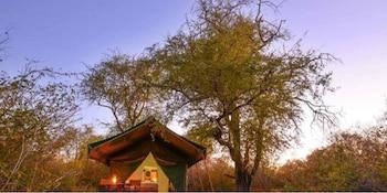 Tuskers Wilderness Camp - Guestroom  - #0
