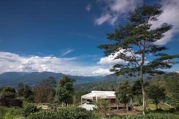 Ramboda Villa - Mountain View  - #0