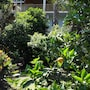Cirali Hotel photo 11/41