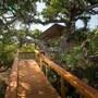 Lion Tree Top Lodge photo 5/20