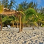 White Sands Beach Resort Tonga photo 6/26