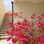 Scilla Maris Charming Suites-Restaurant photo 24/41