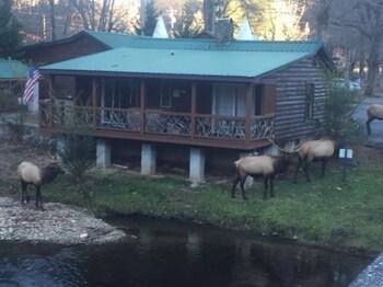 Qualla Cabins and Motel near Cherokee Casino in Whittier, North Carolina