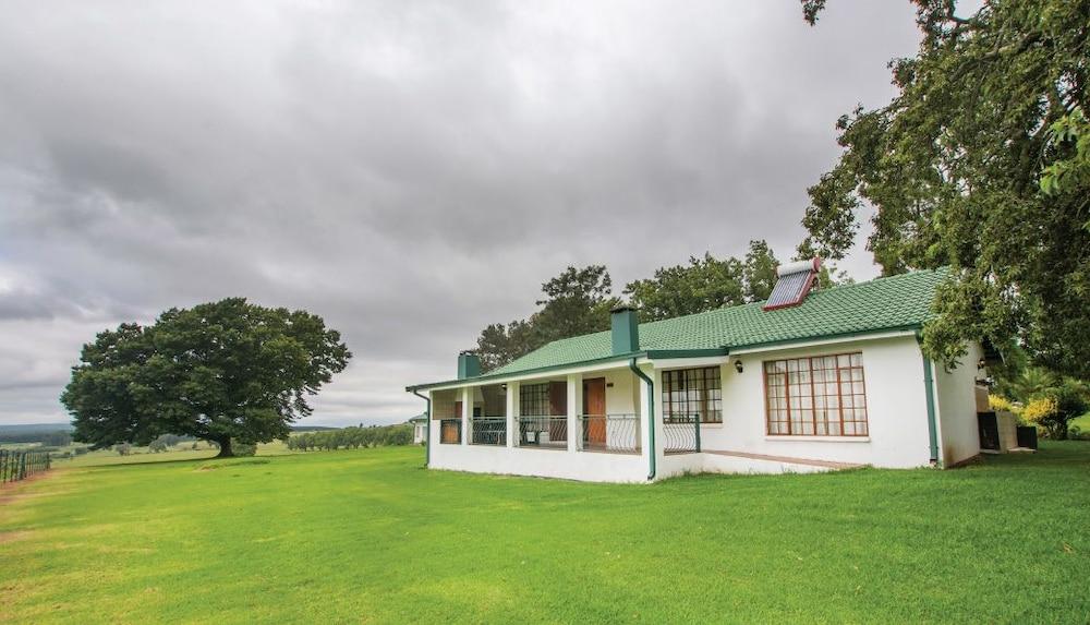 Hoyo Hoyo Machadostud Lodge