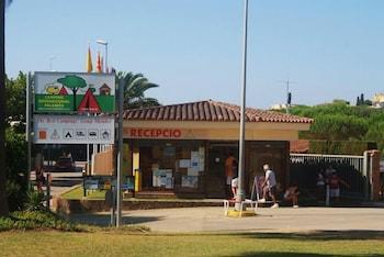 Photo for Camping Internacional Palamos in Palamos