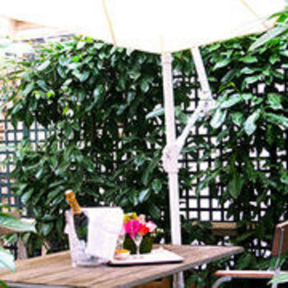 Terrace/Patio 52 of 90