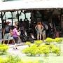 Sugar Cane Guest House 1 photo 16/41