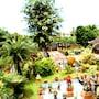 Lanna Saithong Resort photo 34/41
