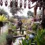 Lanna Saithong Resort photo 27/41