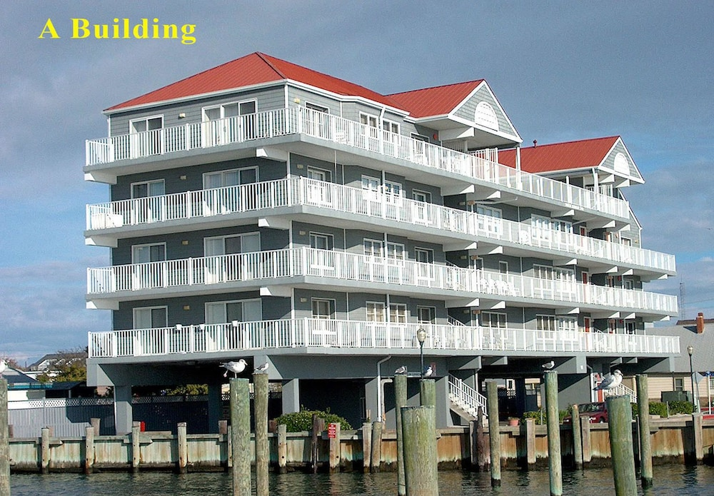 White Marlin 304A 1 Br condo by RedAwning