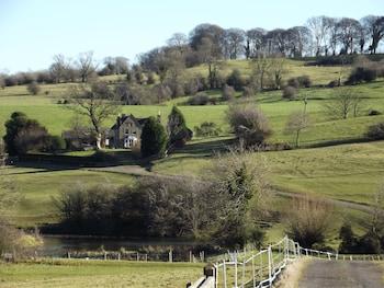 Woodland Cottage - Property Grounds  - #0