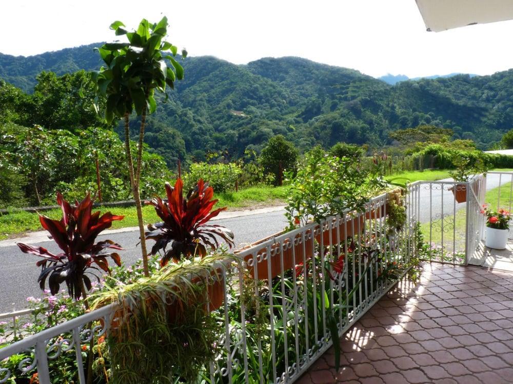 Autana Bed and Breakfast - Hostel
