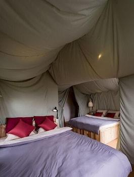 Yolo Camping House - Guestroom  - #0