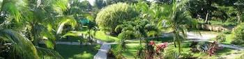 Hotel Villa Del Sol - Property Grounds  - #0