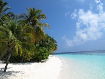 Photo for Equa Reef Maldives in Feydhoo